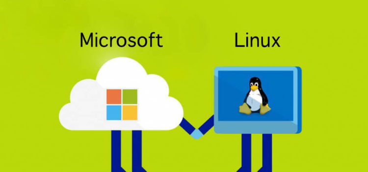 Microsoft - Linux